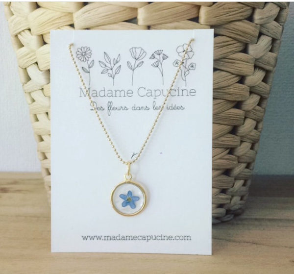Ginger Flower - Madame Capucine